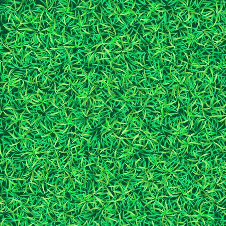 grass texture: Green grass background. Grass texture. Green grass field Illustration