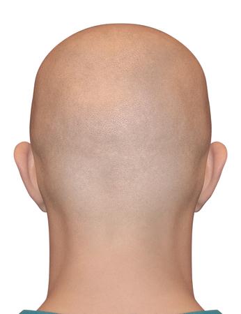 bald: Nuca afeitada suave aislado sobre fondo blanco. Cabeza calva masculina humana. Foto de archivo
