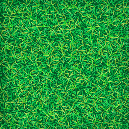 grass field: Green grass field textured background Illustration