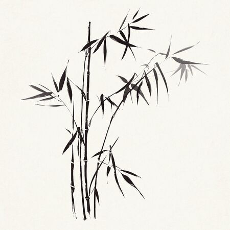 art painting: Bamboo branches outlined in traditional asian black and white style Stock Photo