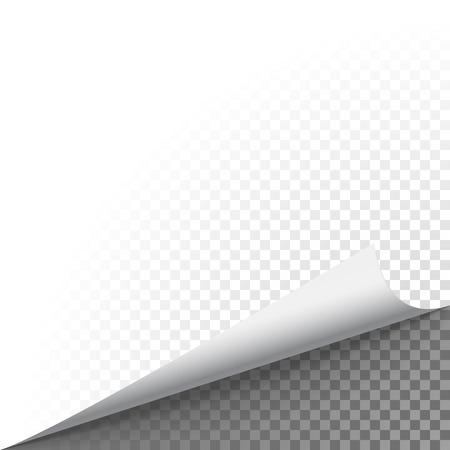 Papier hoek schil. Pagina gekrulde fold met schaduw. Leeg blad van gevouwen kleverige document nota. Vector illustratie sticker hoek verdraaid op transparante achtergrond.