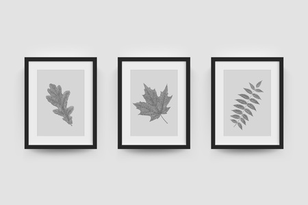 white wall: Picture frame with autumn leaf photograph. Vector realisitc paper plastic white picture-framing mat with wide borders shadow. Isolated picture frame A3, A4 vertical mockup template on gray