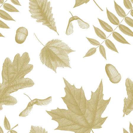 acer: Gold vintage engraving of autumn leaves on white background. Seamless pattern. Vector golden autumnal oak, maple, acer, rowan leaf, acorn, maple keys seed, whirlybirds, polynoses set collection