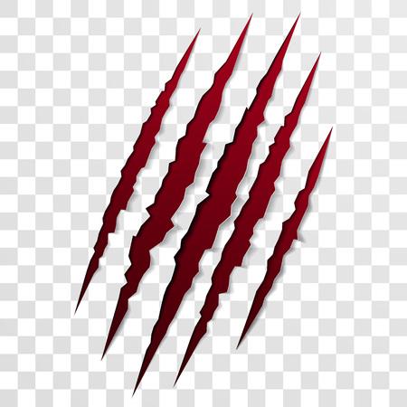 loup garou: Claw scratch marque. Vector pointu déchiré scrape trace de l'ours de la bête ou patte de tigre. Le papier déchiqueté déchiré par la griffe scratch
