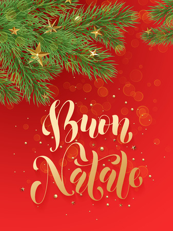 buon: Buon Natale Italian Merry Christmas background decoration ornaments of gold stars, golden balls, Christmas tree branches. Merry Christmas text calligraphy lettering