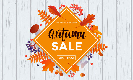 50 off: Autumn sale poster of discount promo web banner for autumnal seasonal shopping of maple leaf, rowan berry or oak acorn and mushroom. Vector design template 50 percent shop offer template advertising Illustration
