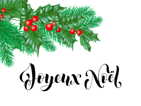 Joyeux Noel French Merry Christmas holiday hand drawn calligraphy text greeting and holly wreath decoration for card design template. Vector Christmas tree fir or pine branch ornament frame