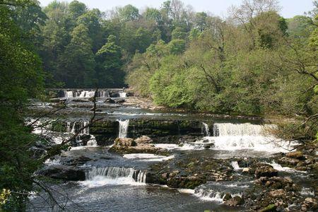 yorkshire dales: Aysgarth cae r�o URE Yorkshire Dales