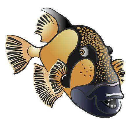 triggerfish: Titan triggerfish, Balistoides viridescens