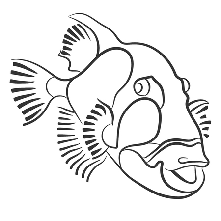 balistoides: Titan triggerfish drawn with a pencil, Balistoides viridescens