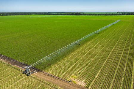 Irrigation farming field. Irrigation System for farming aerial view.
