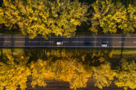 Autumn landscape with road with cars and beautiful colored trees aerial top view. 版權商用圖片