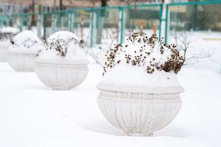 Flower vases covered with snow outside. Big flower pot covered in fresh snow in winter park