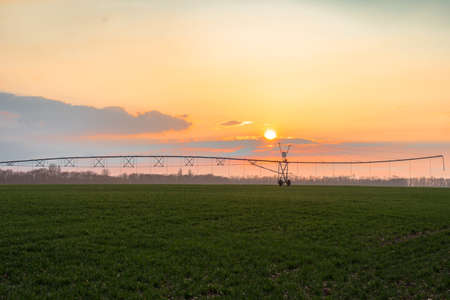Irrigation system in operation during a golden summer sunset