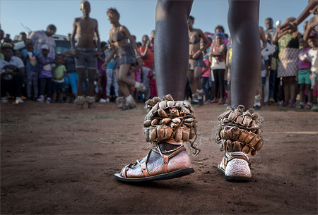 zulu: Photograph of Zulu Traditional Dancers with main focus on the feet of the lead dancer with rattle seeds around his ankles with a group of spectators