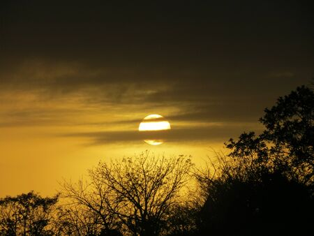 misterious: bushveld sunrise 2