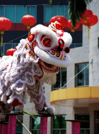lion dance: Chinese new year lion dance festival