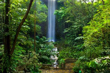 coo: Waterfall