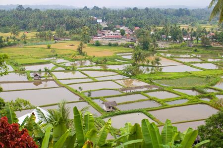 bukit: Rural area in Bukit Tinggi, Indonesia Stock Photo