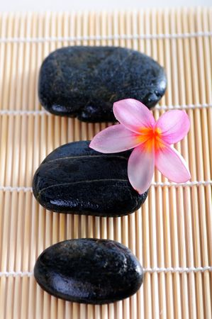 Stones with pink flower Stock Photo - 6614283