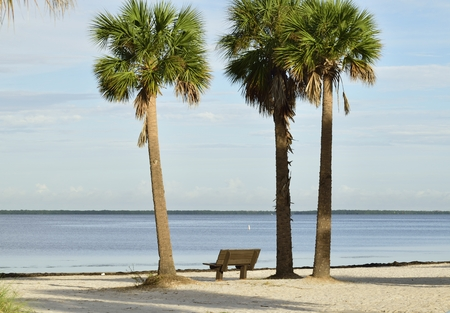 Shady place to relax on the beach.