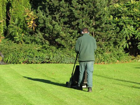 Man using motor lawn mower on sunny day.