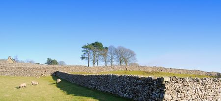 wharfedale: Yorkshire Dales countryside. Grassington, Upper Wharfedale, UK. Stock Photo