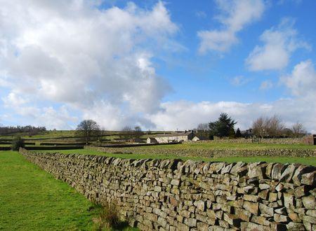 dales: Yorkshire Dales farmland showing traditional stone walls