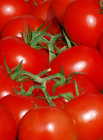 Close-up of red tomatoes on market stall Stock Photo - 3775445