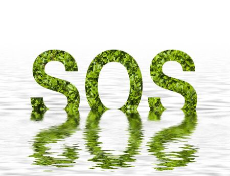 sinking: Environmental concept showing sinking leaf SOS in simulated water