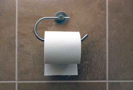 Close up of toilet roll and holder in bathroom