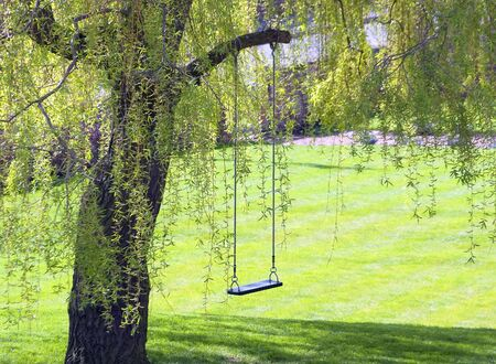Empty swing hangs from tree in garden
