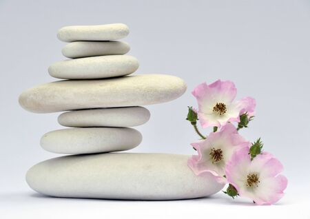 Pile of smooth stones with delicate red flower photo