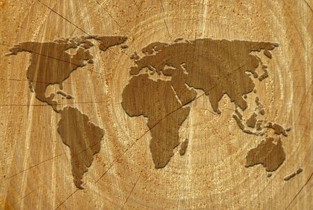 World outline map on surface of sawn tree photo