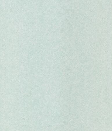 scanned: Luxurious green coloured, scanned textured paper for backgrounds and fills.  Stock Photo