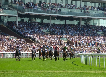 caballos corriendo: Acabado de carrera de caballos en la reunión de York Race Course