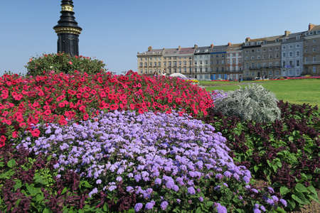 north yorkshire: Summer flower bed at Whitby, North Yorkshire, UK.