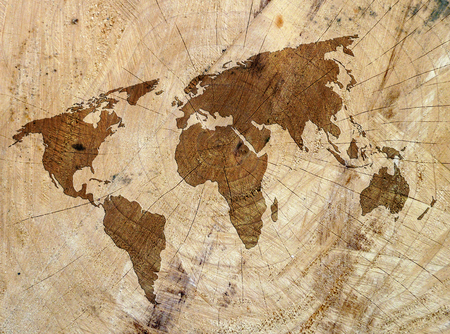 Closeup of wood texture overlaid with outline map of world Imagens - 55959740