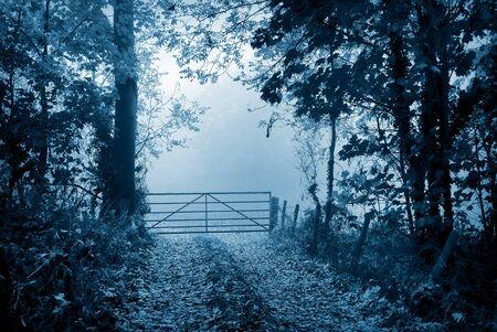 portones: Carril del país lleva a campo de niebla más allá de una puerta agricultor ?? s. Foto de archivo