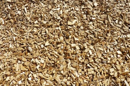 chippings: Closeup of wood chippings on garden pathway