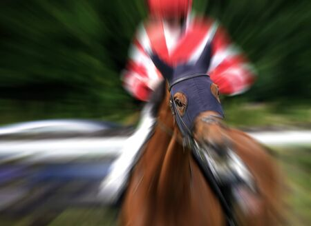 racehorse: Zoom effect added to eye of racehorse Stock Photo