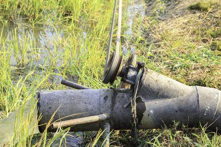 internally: Water pump