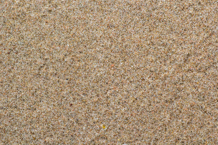 This is texture of sand on the beach. The color is light brown.