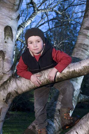 inocent: Boy hanging in tree Stock Photo