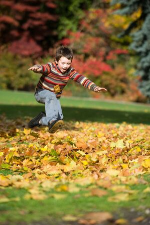heap: boy jumping in pile of leaves