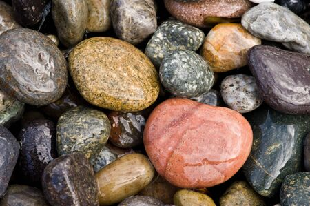 detail of rocky beach
