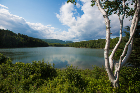 A pond in Acadia National Park, Maine, USA Stock Photo