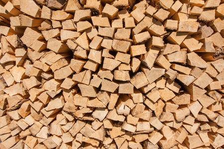 Stored hard wood cut for fire place