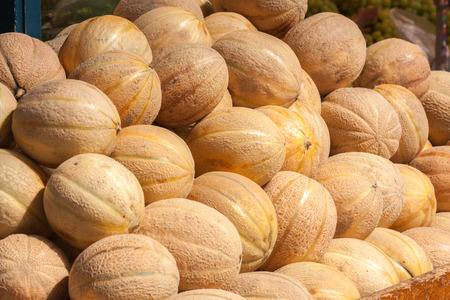 plie of Canteloupe melon fruit (Cucumis melo) Stock Photo