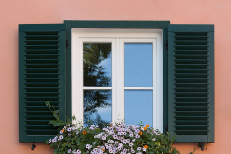Window with green bars and flowers, pink wall background